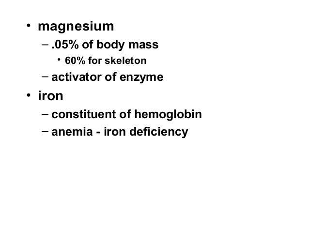 B1 git bio1 digestion