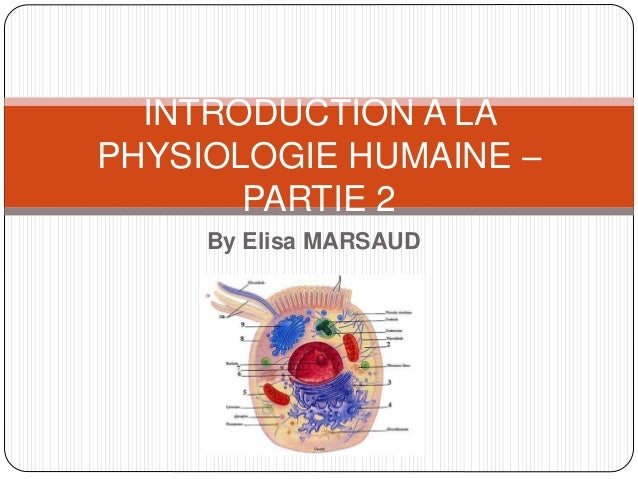 By Elisa MARSAUD INTRODUCTION A LA PHYSIOLOGIE HUMAINE – PARTIE 2