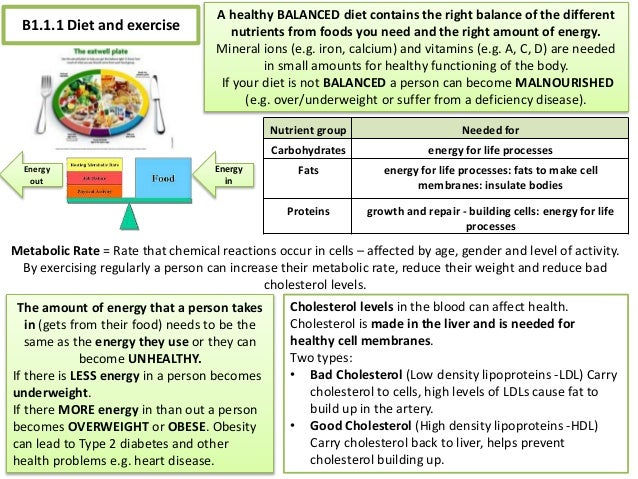 b1 1 gcse science biology Biology revision for b1 1 biology: b1the whole topic 2 diet and exercise• healthy diet = balanced diet• exercise increases the amount of energy used by the body and decreases the amount of stored fat• inherited factors can affect your metabolic rate and your blood cholesterol levels 3.