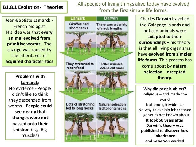 science biology coursework gcse Gcse biology is one of seven qualifications in our science for all suite, developed with teachers to inspire and challenge students of all abilities and aspirations.