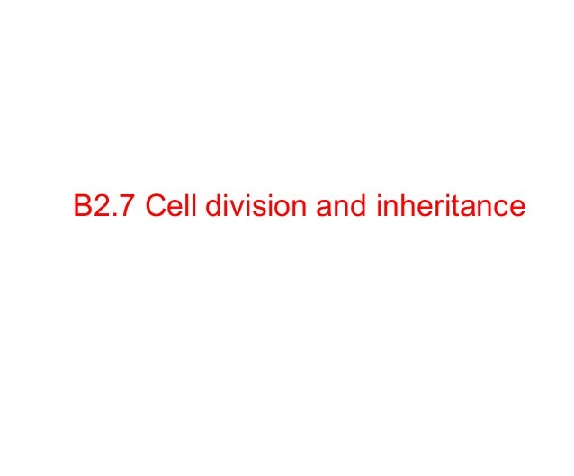 B2.7 Cell division and inheritance