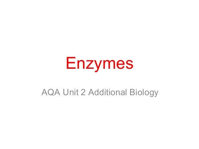 Enzymes AQA Unit 2 Additional Biology
