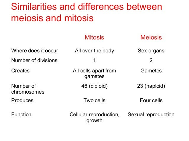 Free Worksheets cell growth and reproduction worksheet : B2.7 meiosis and mitosis