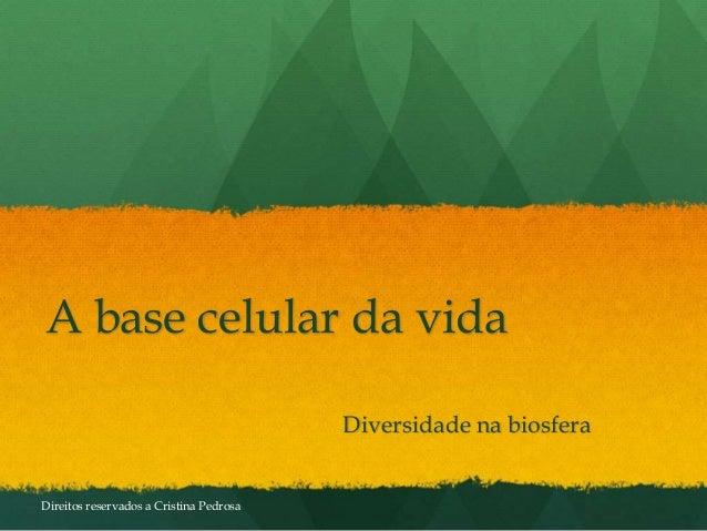 A base celular da vida Diversidade na biosfera Direitos reservados a Cristina Pedrosa