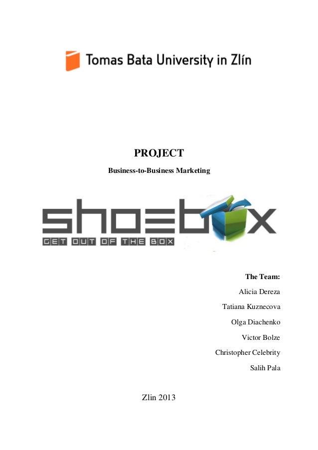 PROJECT Business-to-Business Marketing The Team: Alicia Dereza Tatiana Kuznecova Olga Diachenko Victor Bolze Christopher C...