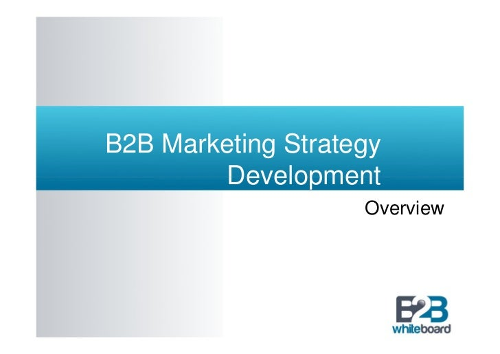 B2B Marketing Strategy        Development                    Overview