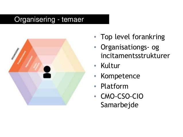 • Top level forankring • Organisationgs- og incitamentsstrukturer • Kultur • Kompetence • Platform • CMO-CSO-CIO Samarbejd...