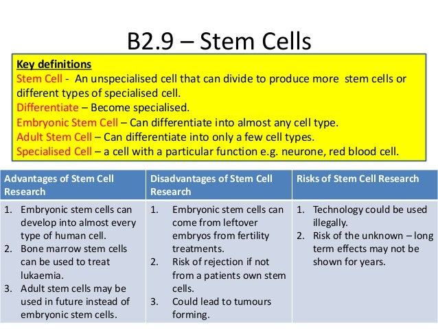 pros cons stem cell research essays List of cons of embryonic stem cell research 1 the embryonic stem cell research is controversial because the cells are derived from human embryos and for them to be.