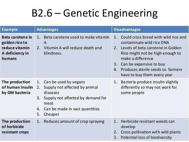 Risks of genetic engineering