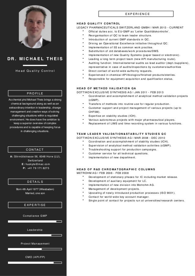 dr  michael theis cv 20161102