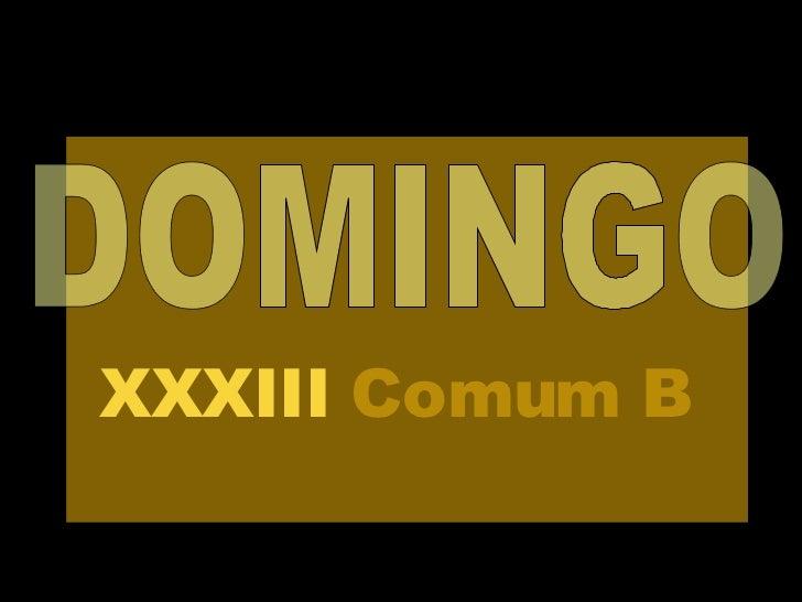 DOMINGO XXXIII  Comum   B