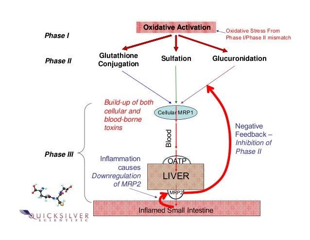 Quicksilver Scientific Therapeutic Detoxification System