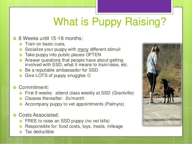 Susquehanna Service Dogs Presentation Tiana Kelly
