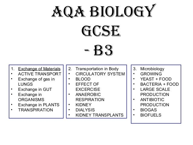 gcse economics unit 1 notes Factors of production: gcse economics revision the factors of production are the building blocks of economics oxnotes i/gcse revision notes tweet #oxnotes.