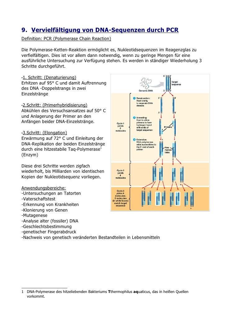 9. Vervielfältigung von DNA-Sequenzen durch PCR Definition: PCR (Polymerase Chain Reaction)  Die Polymerase-Ketten-Reaktio...