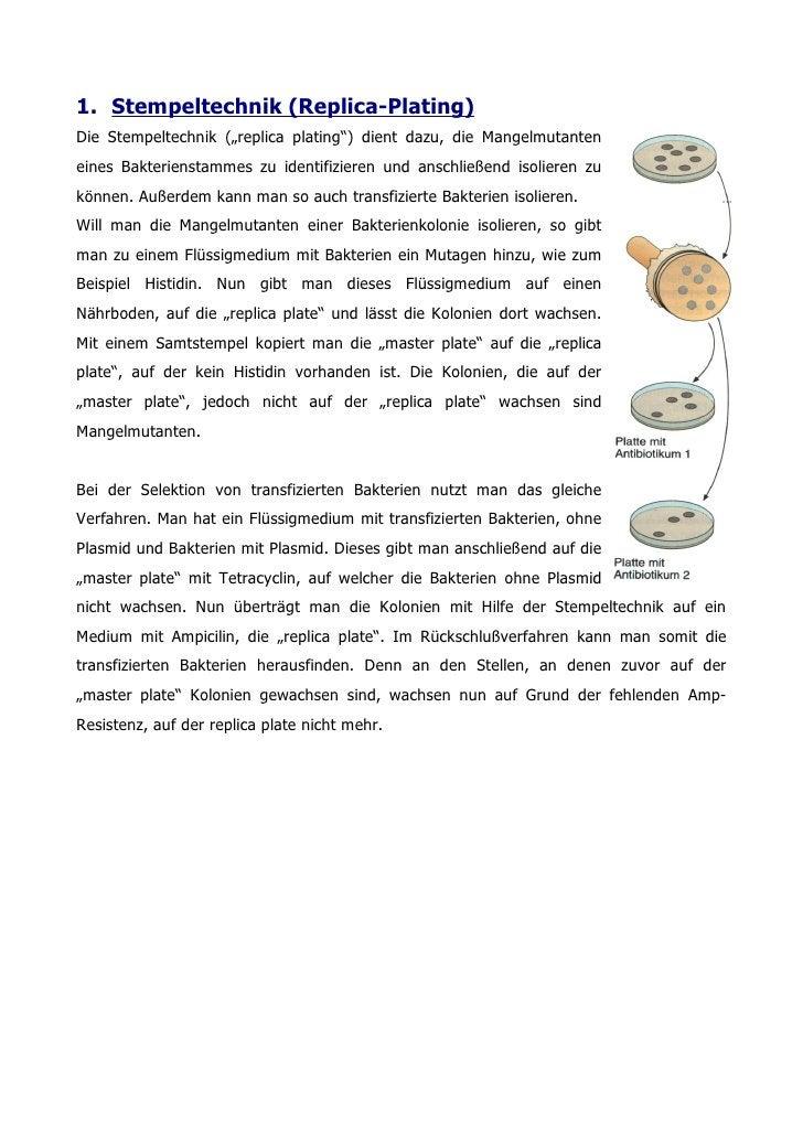 """1. Stempeltechnik (Replica-Plating) Die Stempeltechnik (""""replica plating"""") dient dazu, die Mangelmutanten eines Bakteriens..."""