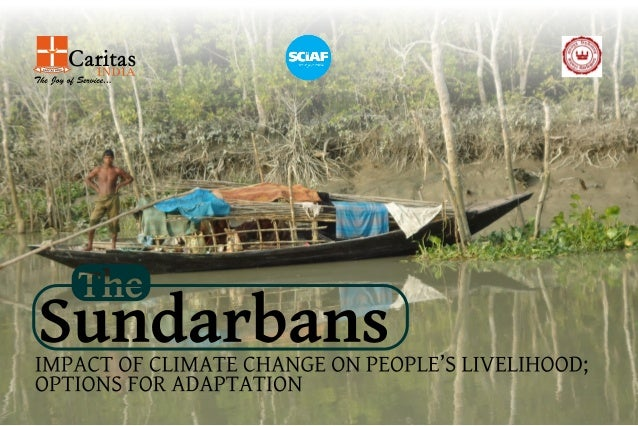 Sunderban Research Final Booklet