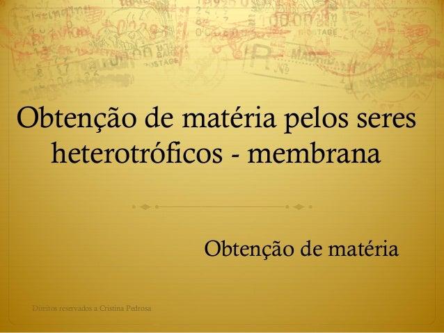 Obtenção de matéria pelos seres heterotróficos - membrana Obtenção de matéria Direitos reservados a Cristina Pedrosa