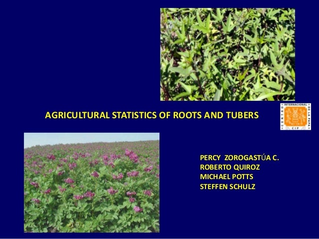 AGRICULTURAL STATISTICS OF ROOTS AND TUBERS  PERCY ZOROGASTÚA C. ROBERTO QUIROZ MICHAEL POTTS STEFFEN SCHULZ
