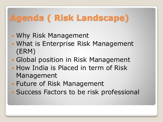 """The master's research paper on the theme: """"risk management of the."""
