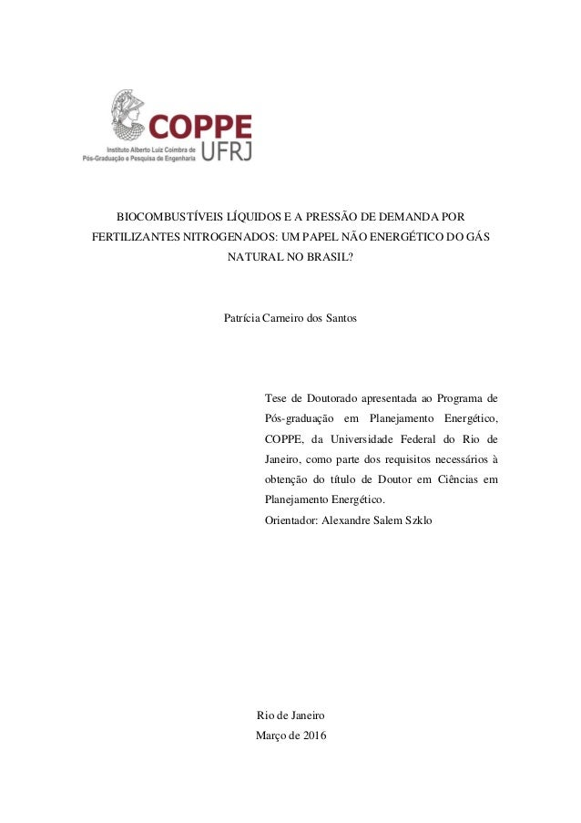 BIOCOMBUSTÍVEIS LÍQUIDOS E A PRESSÃO DE DEMANDA POR FERTILIZANTES NITROGENADOS: UM PAPEL NÃO ENERGÉTICO DO GÁS NATURAL NO ...