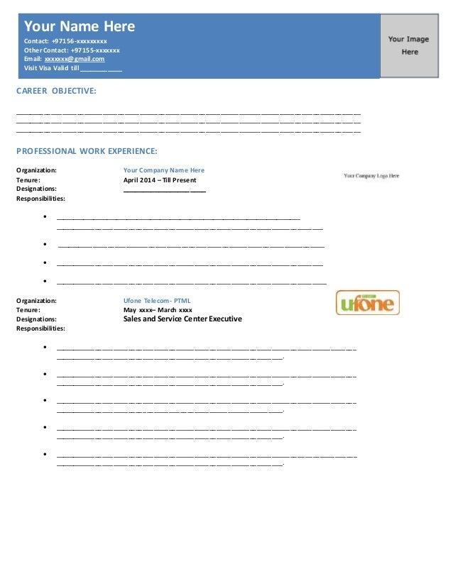 uae standard professional resume format career objective