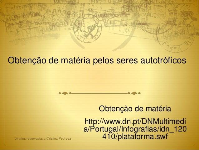 Obtenção de matéria pelos seres autotróficos Obtenção de matéria http://www.dn.pt/DNMultimedi a/Portugal/Infografias/idn_1...