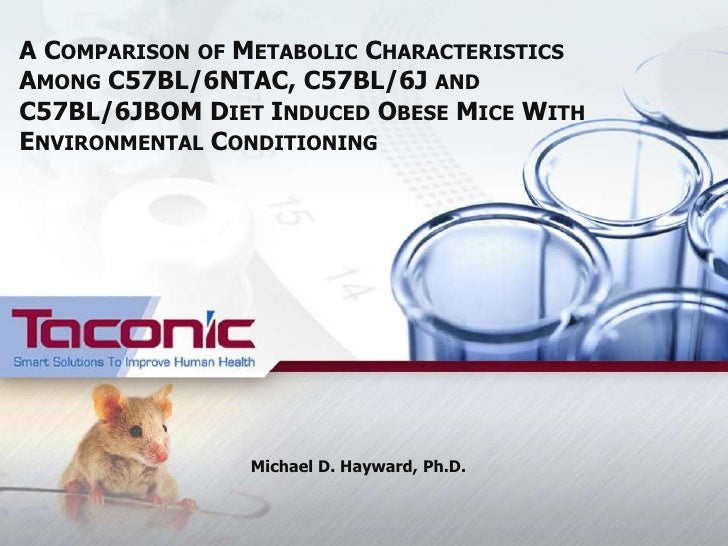 A COMPARISON OF METABOLIC CHARACTERISTICSAMONG C57BL/6NTAC, C57BL/6J ANDC57BL/6JBOM DIET INDUCED OBESE MICE WITHENVIRONMEN...