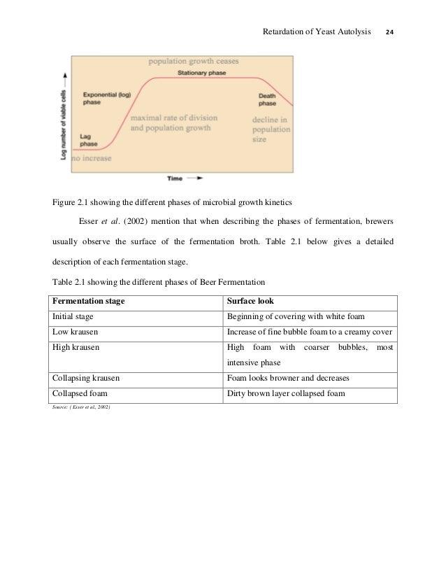 Final Major Project Report Essay