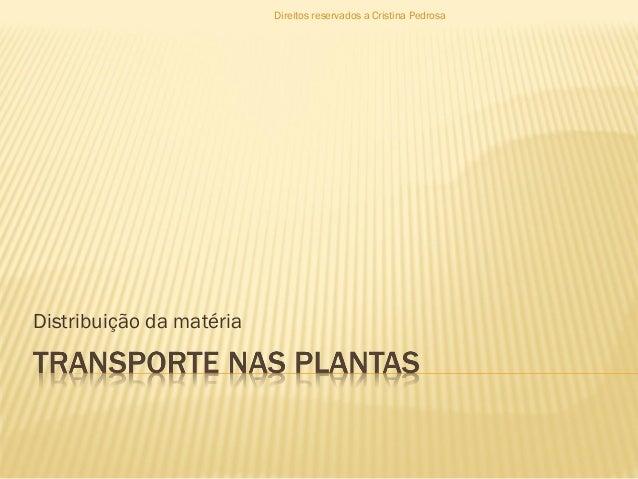 Distribuição da matéria Direitos reservados a Cristina Pedrosa