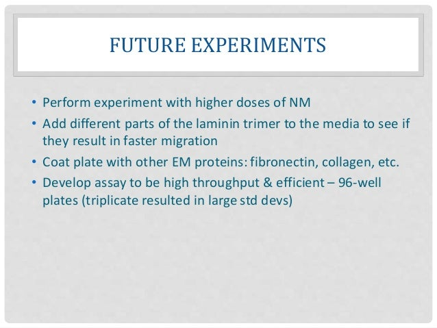 FUTURE EXPERIMENTS • Perform experiment with higher doses of NM • Add different parts of the laminin trimer to the media t...