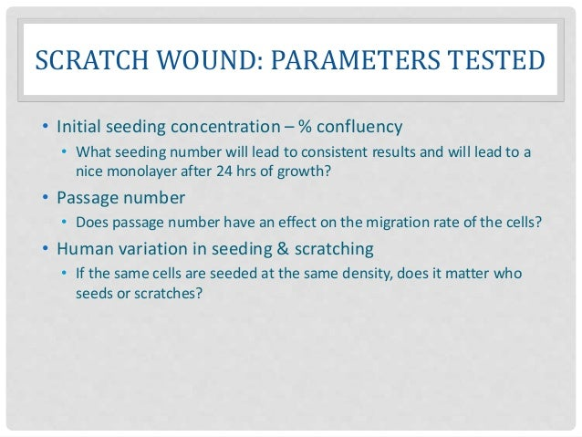 SCRATCH WOUND: PARAMETERS TESTED • Initial seeding concentration – % confluency • What seeding number will lead to consist...