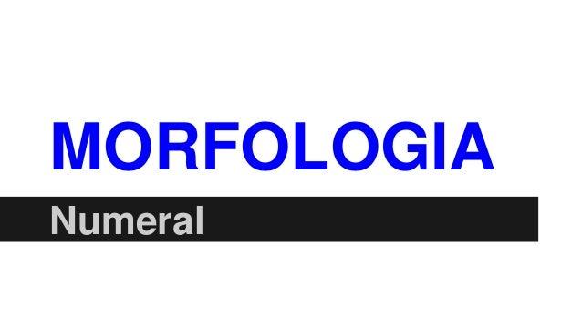 MORFOLOGIA Numeral