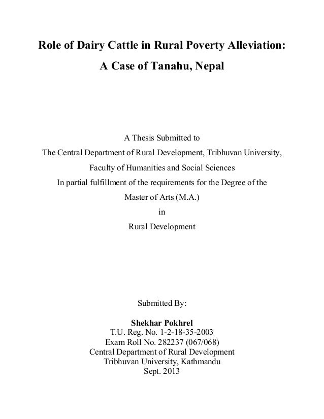 thesis on poverty alleviation
