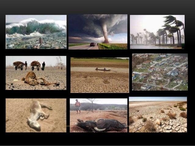 Os/as alunos/as: 1 - Conhecem as causas das alterações climáticas. 2 - Compreendem os impactes ambientais resultantes das ...