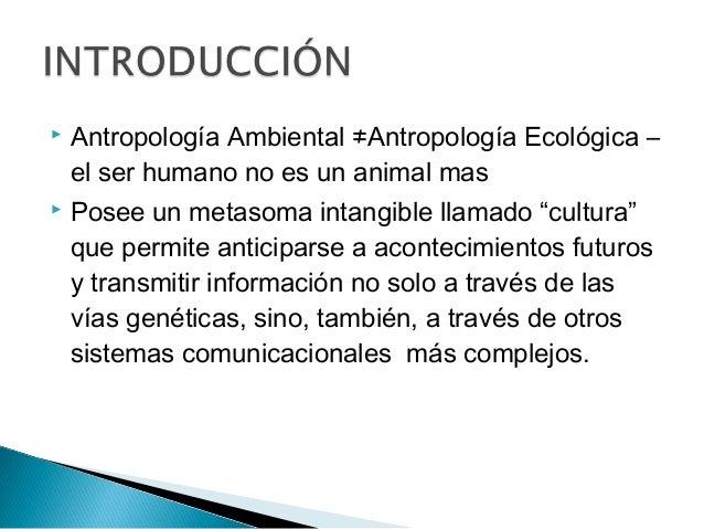  Antropología Ambiental ≠Antropología Ecológica – el ser humano no es un animal mas  Posee un metasoma intangible llamad...