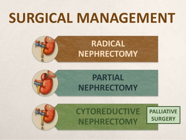term papers radical neprectomy Writing term papers is a necessity for students following the challenges that come with meeting the requirements of term papers, our company has established a platform whereby students can seek term paper writing help services.