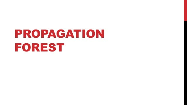PROPAGATION FOREST: FIRST PARENT ATTRIBUTION n pageviews One UV