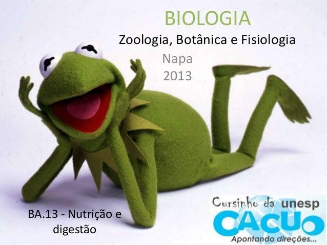 BIOLOGIA Zoologia, Botânica e Fisiologia Napa 2013 BA.13 - Nutrição e digestão