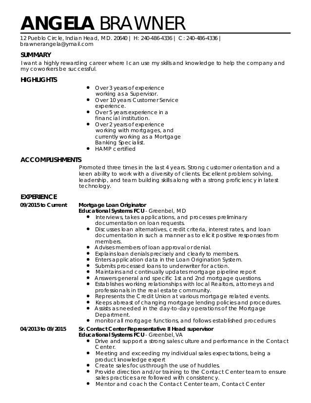 professional resume pdf 2015