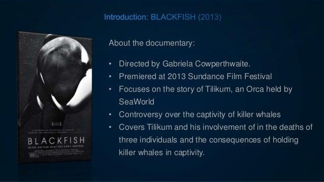 Black Fish - Sea World Ethics Case
