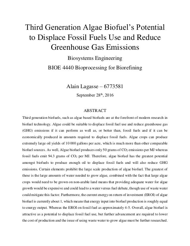 literature review biofuel