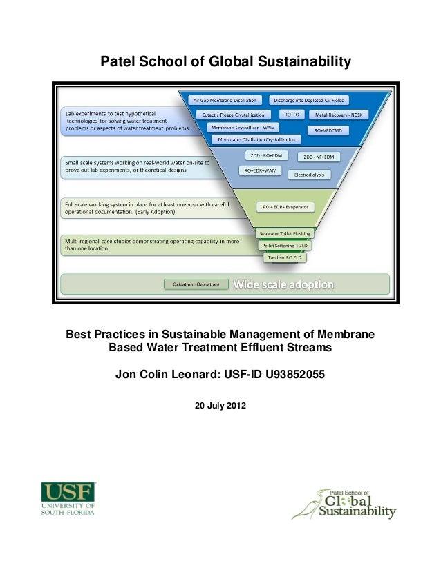 XACC 280 Financial Analysis Final Paper