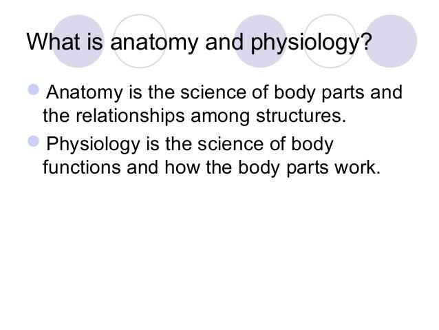 chapter 1 notes intro to anatomy and physiology, Human Body