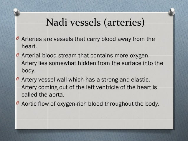 Nadi vessels (arteries) O Arteries are vessels that carry blood away from the heart. O Arterial blood stream that contains...