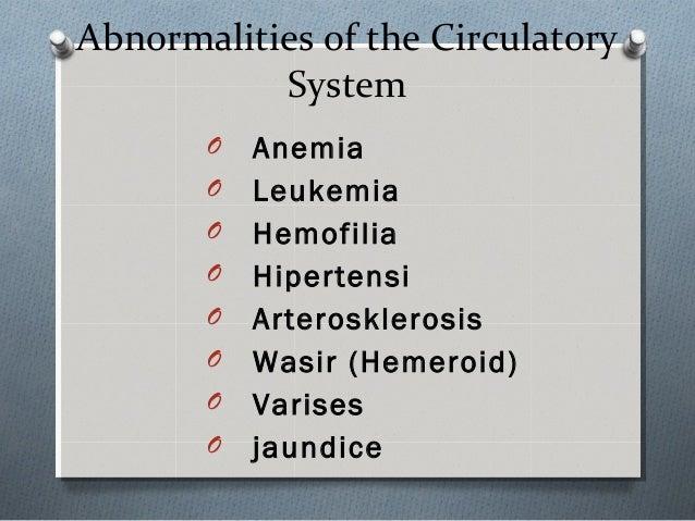 Blood Circulatory System in Human Body