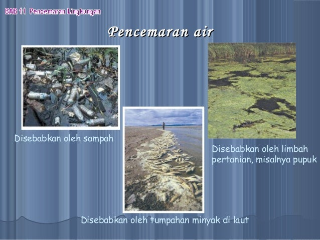 PPT Biologi Bab Pencemaran Lingkungan