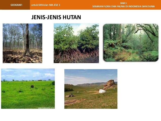 bab 1 geo kls xi rev 41 638 - Jenis Jenis Hutan Di Indonesia