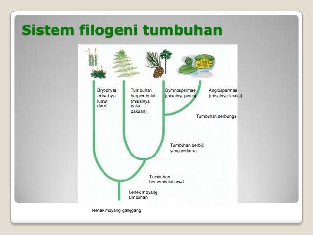 Hakekat biologi by poslen simbolonspd moyang ganggang 32 ccuart Choice Image