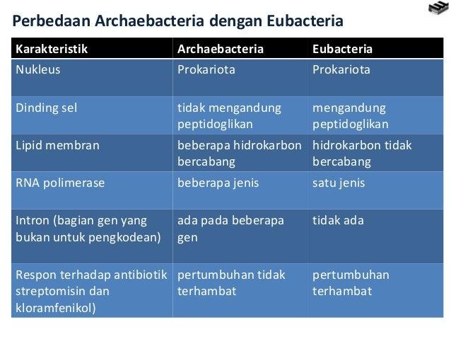 Eubacteria ppt.